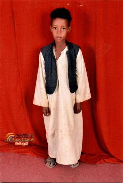 محمد احمد محمد ال شنقيل